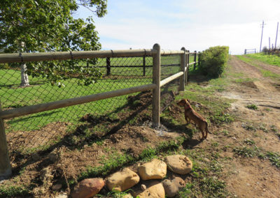 ranch-fencing-2
